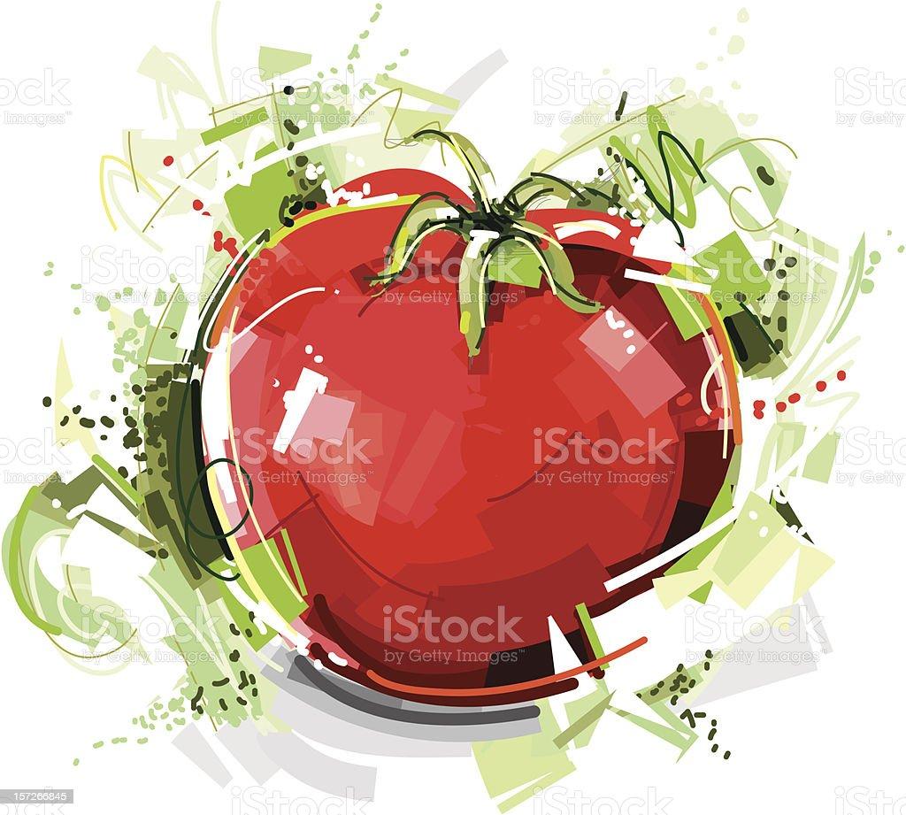 wild tomato sketch royalty-free stock vector art