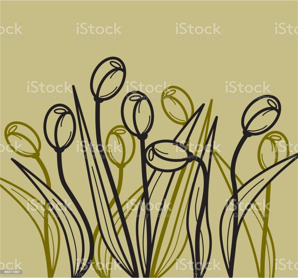wild tulips royalty-free stock vector art