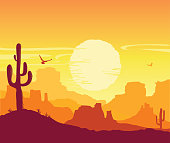 American desert nature background. Vector Arizona prairie landscape with sun and cactus