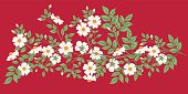 Wild White Roses On Red Background