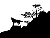 wild wolf standing at rock cliff with conifer tree - wilderness scene black and white vector silhouette design