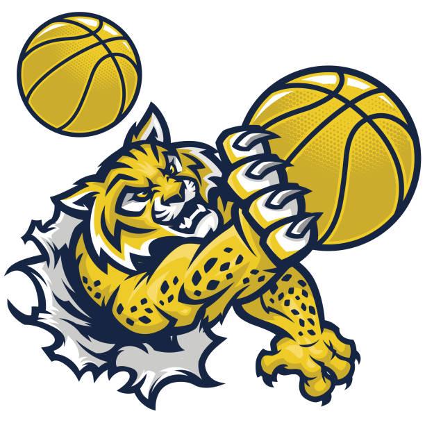 Wildcat Basketball An aggressiveWildcat ripping through a shirt to make a slam dunk. bobcat stock illustrations