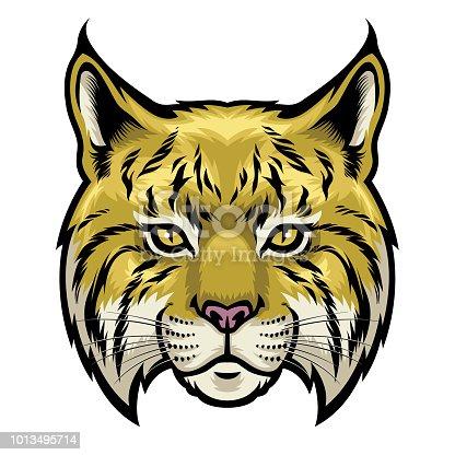 vector of wildcat head
