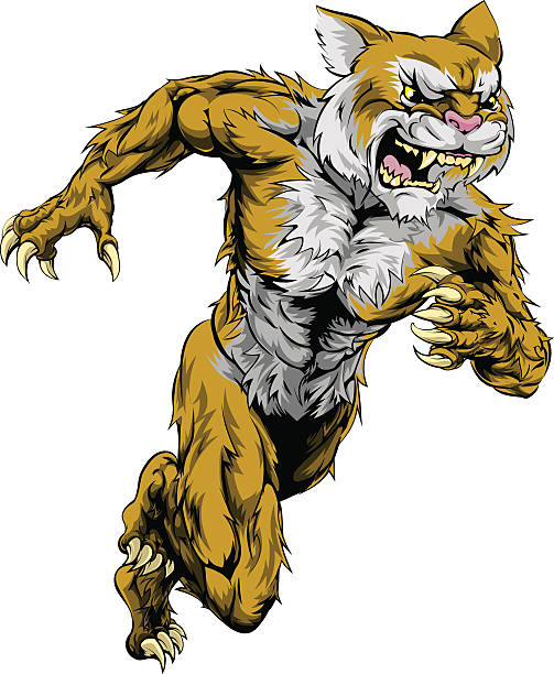 Wildcat sports mascot running vector art illustration