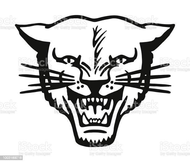 Wildcat vector id1003189218?b=1&k=6&m=1003189218&s=612x612&h=986gnop4tjymyjahehbxnp1scccmxoxv2id90tu2nfs=