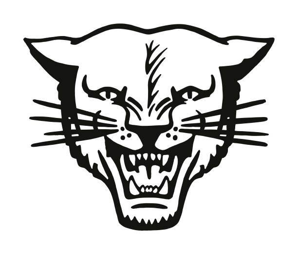 Wildcat Wildcat bobcat stock illustrations