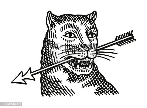 Wildcat With an Arrow in its Mouth