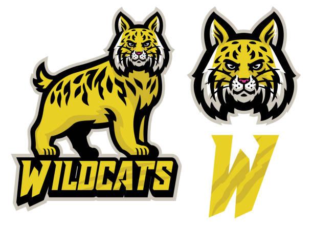 wildcats sport mascot set vector of wildcats sport mascot set bobcat stock illustrations