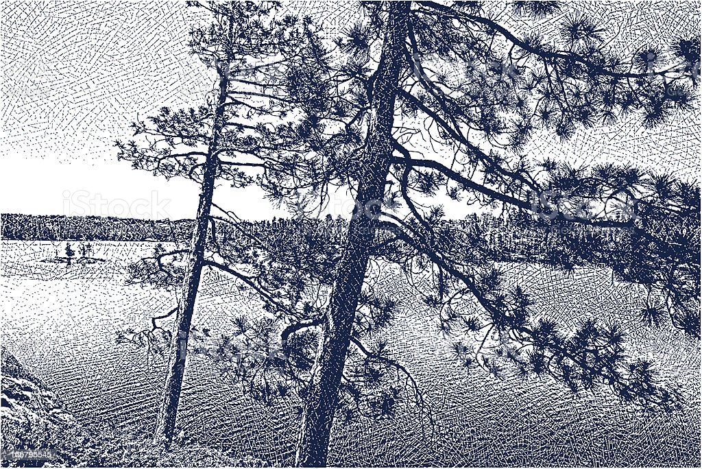 Wilderness Lake and Pine Trees vector art illustration