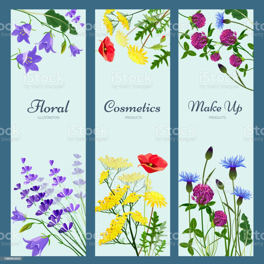 Wildflowers Banners Floral Frame With Place For Text Different Herb Flowers Aromatherapy Products Nature Medicine Vector Pictures Stock Illustration Download Image Now Istock