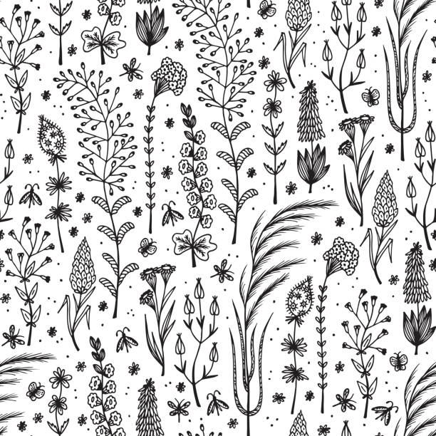 stockillustraties, clipart, cartoons en iconen met wildflowers. hand drawn doodle wild flowers. floral seamless vector pattern - grasspriet