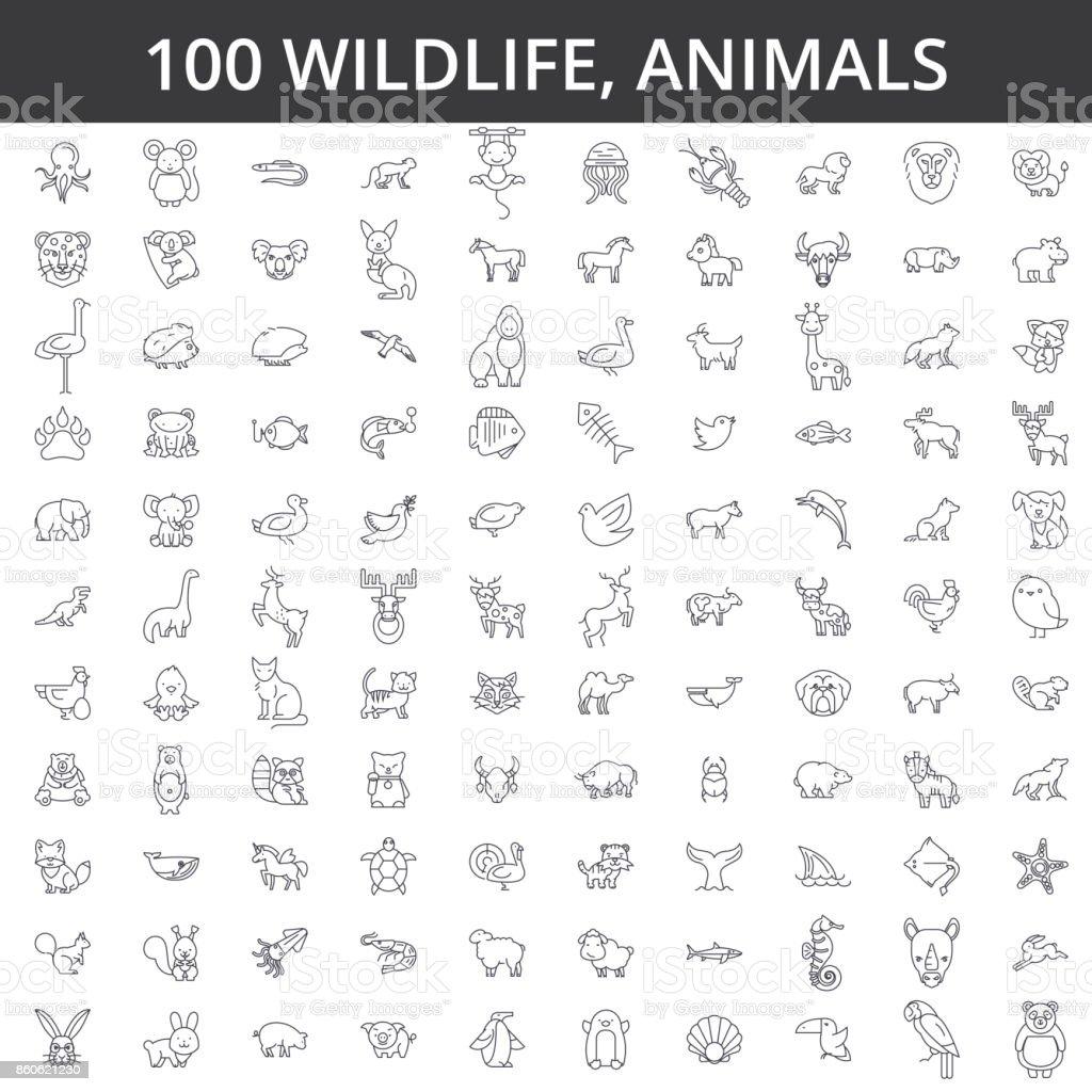 アフリカ野生動物、海、家庭用、森、動物園の動物、猫、犬、オオカミ、フォックス、虎、魚、熊、馬、ディノ、サイ、猿線のアイコン、標識。図ベクトル概念。編集可能なストローク - アフリカのロイヤリティフリーベクトルアート
