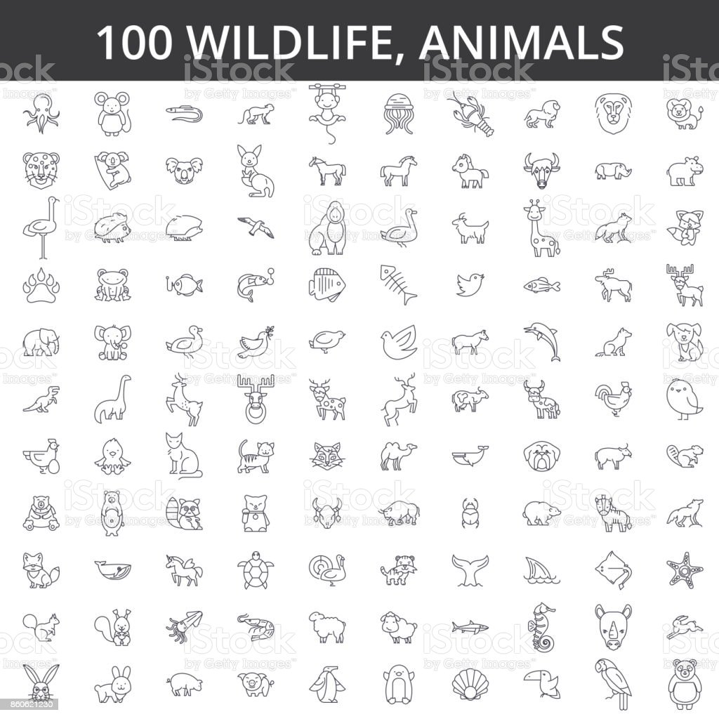 Wildlife african, sea, domestic, forest, zoo animals, cat, dog, wolf, fox, tiger, fish, bear, horse, dino, rhino, monkey line icons, signs. Illustration vector concept. Editable strokes векторная иллюстрация