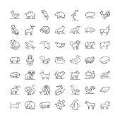 Wildlife animals line icons, signs, symbols vector, linear illustration set