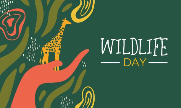 wildlife day afrikanische kunstkarte mit menschlicher hand hält ein wildes giraffe tierpflegekonzept - klimaschutz stock-grafiken, -clipart, -cartoons und -symbole