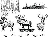 Wildlife Elements