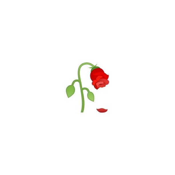 ilustrações de stock, clip art, desenhos animados e ícones de wilted flower isolated realistic vector icon. rose illustration emoji, emoticon, icon - planta morta