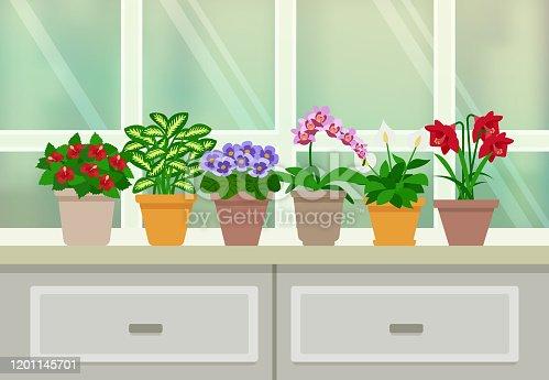 istock window houseplant 1201145701