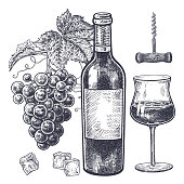 Vintage hand drawing on subject of alcohol. Bottles with red wine, grapes, wine glass with drink, ice slices and corkscrew. Isolated black image on white background. Vector illustration art.