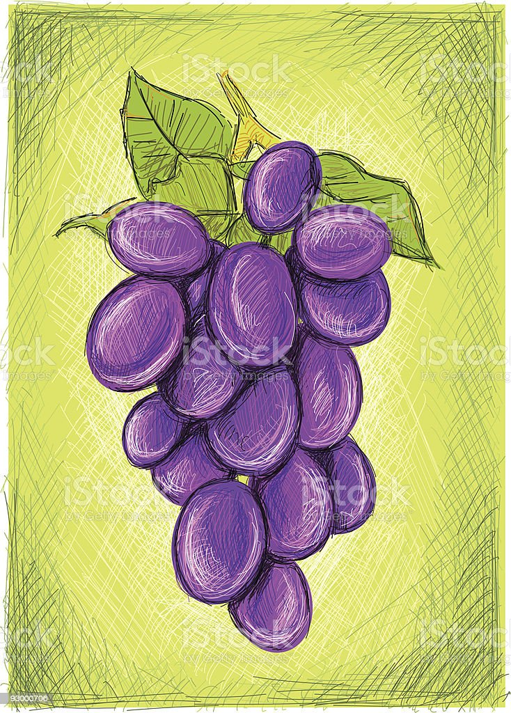 wine clusters royalty-free stock vector art