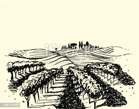 istock Wine & Grape illustration. 159154355