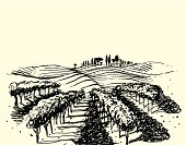 Vector hand drawn picture. Rural landscape with vineyard in the foreground.