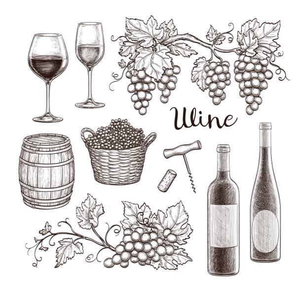 bildbanksillustrationer, clip art samt tecknat material och ikoner med vin ställ isolerade på vit bakgrund. hand dras vektorillustration. vintage stil. - vindruva