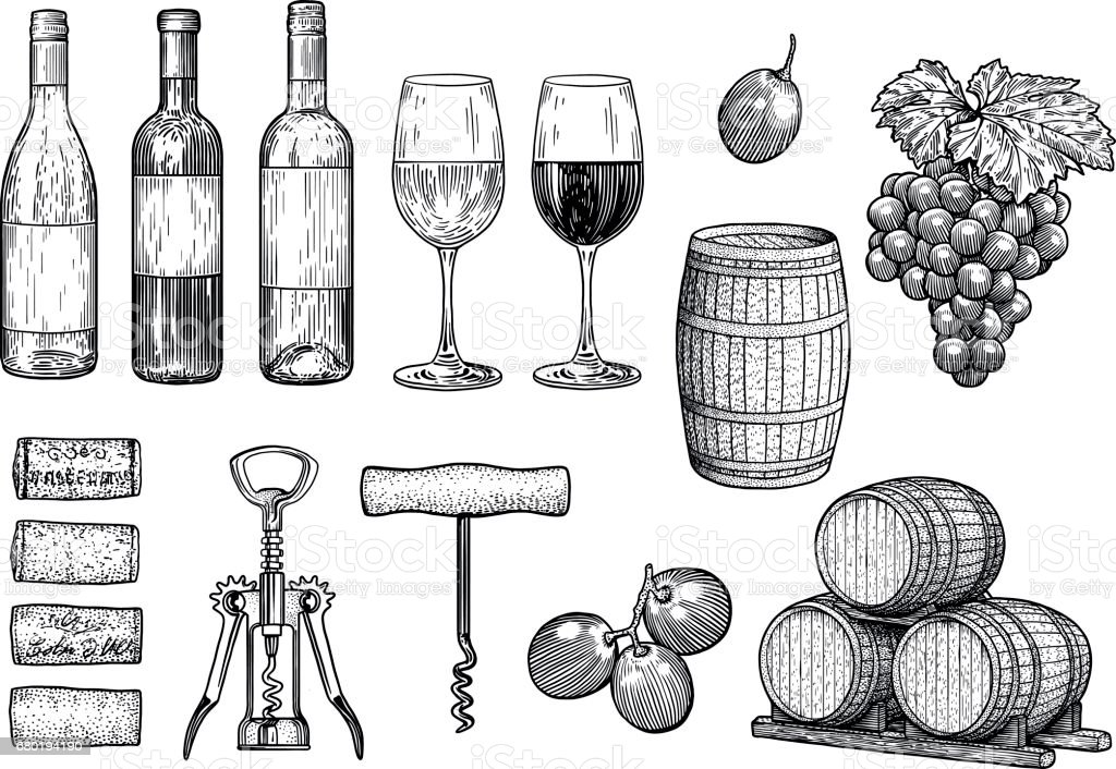 Vin de trucs illustration, dessin, gravure, encre, dessin au trait, vecteur - Illustration vectorielle