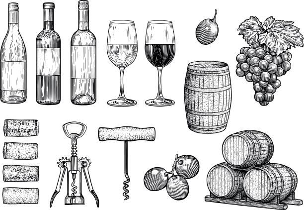 Wine stuff illustration, drawing, engraving, ink, line art, vector vector art illustration