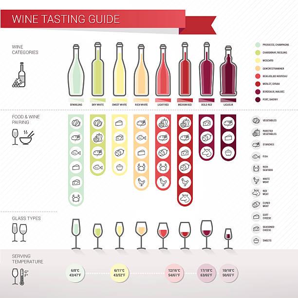 stockillustraties, clipart, cartoons en iconen met wine tasting guide - tasting