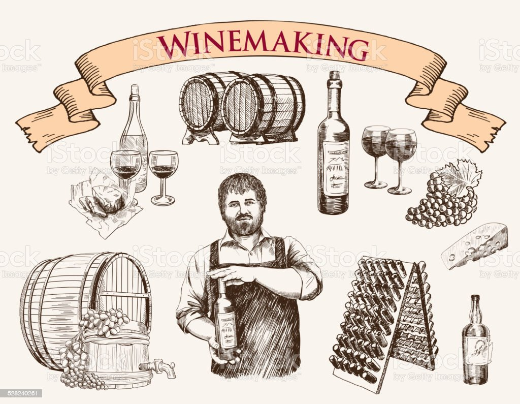 winemaking. the production of sparkling wines vector art illustration