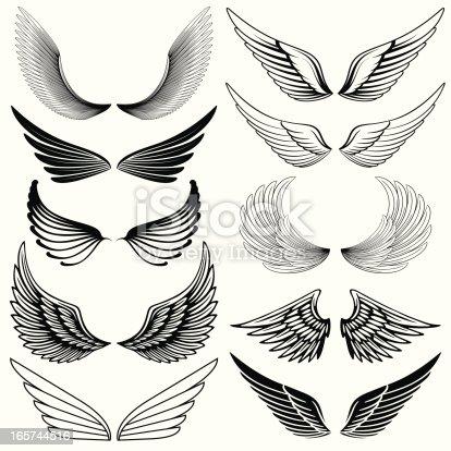istock Wing Design Elements 165744516