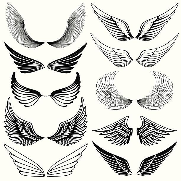 illustrations, cliparts, dessins animés et icônes de aile des éléments de design - tatouages d'ailes