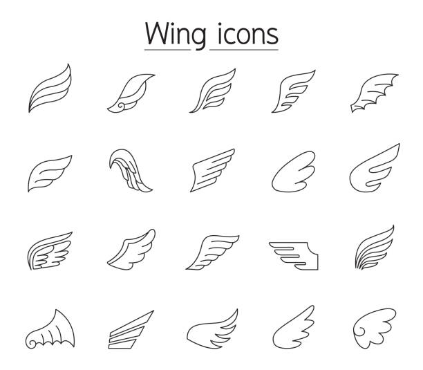 Wing icon set in thin line style Wing icon set in thin line style animal limb stock illustrations