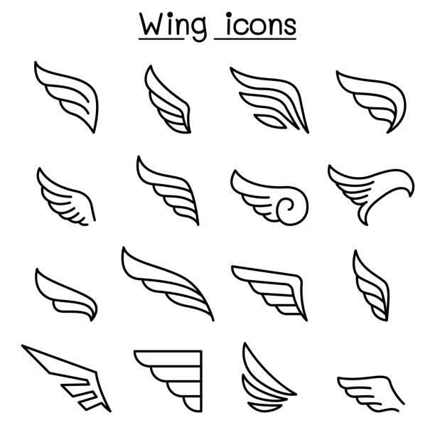 wing icon set in thin line style - animal wing stock illustrations
