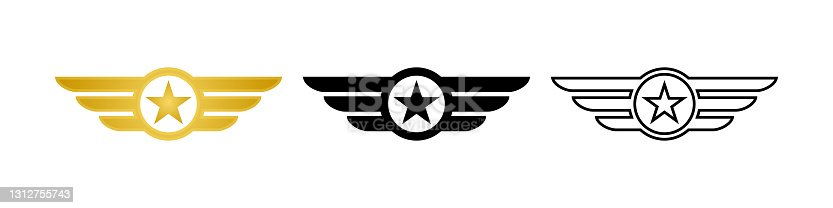 Wing with star icon. Military badge. Army wings symbol. Wings army collection signs. Stock vector. EPS 10