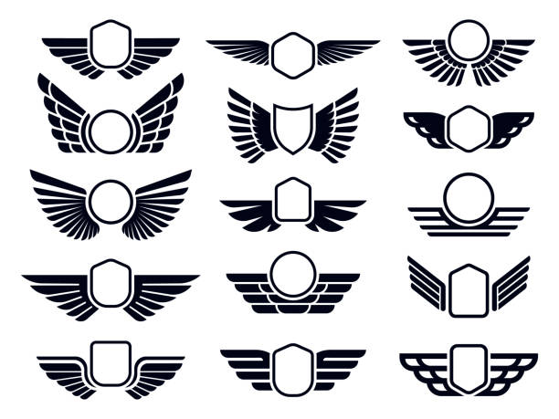 Winged frames. Flying bird shield emblem, eagle wings badge frame and retro aviation fast wing symbol vector set Winged frames. Flying bird shield emblem, eagle wings badge frame and retro aviation fast wing. Delivery cargo labels or military wings insignia. Isolated symbols vector set animal wing stock illustrations