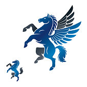 Winged Pegasus and Horse ancient emblems elements set. Heraldic vector design elements collection. Retro style label, heraldry.