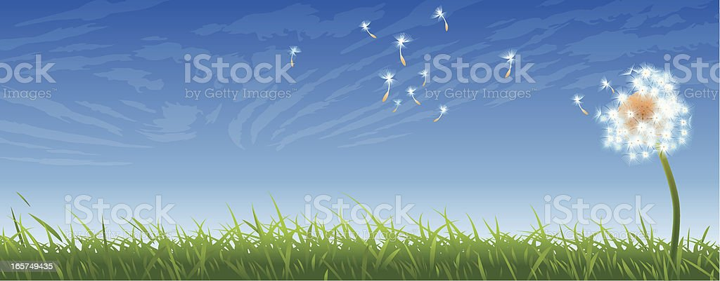 Winged Seed Flying royalty-free stock vector art