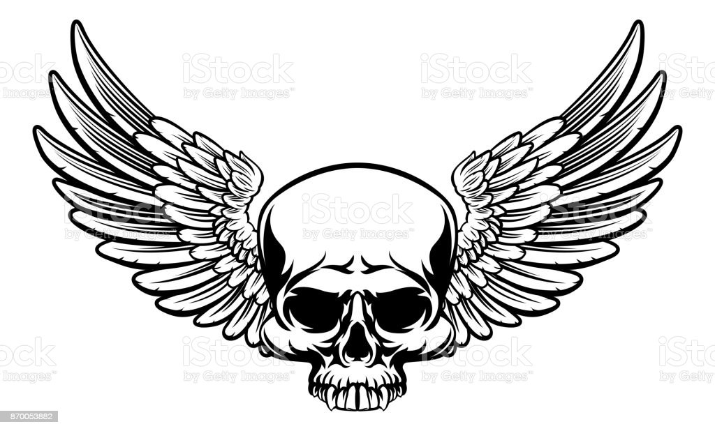 Winged Skull vector art illustration