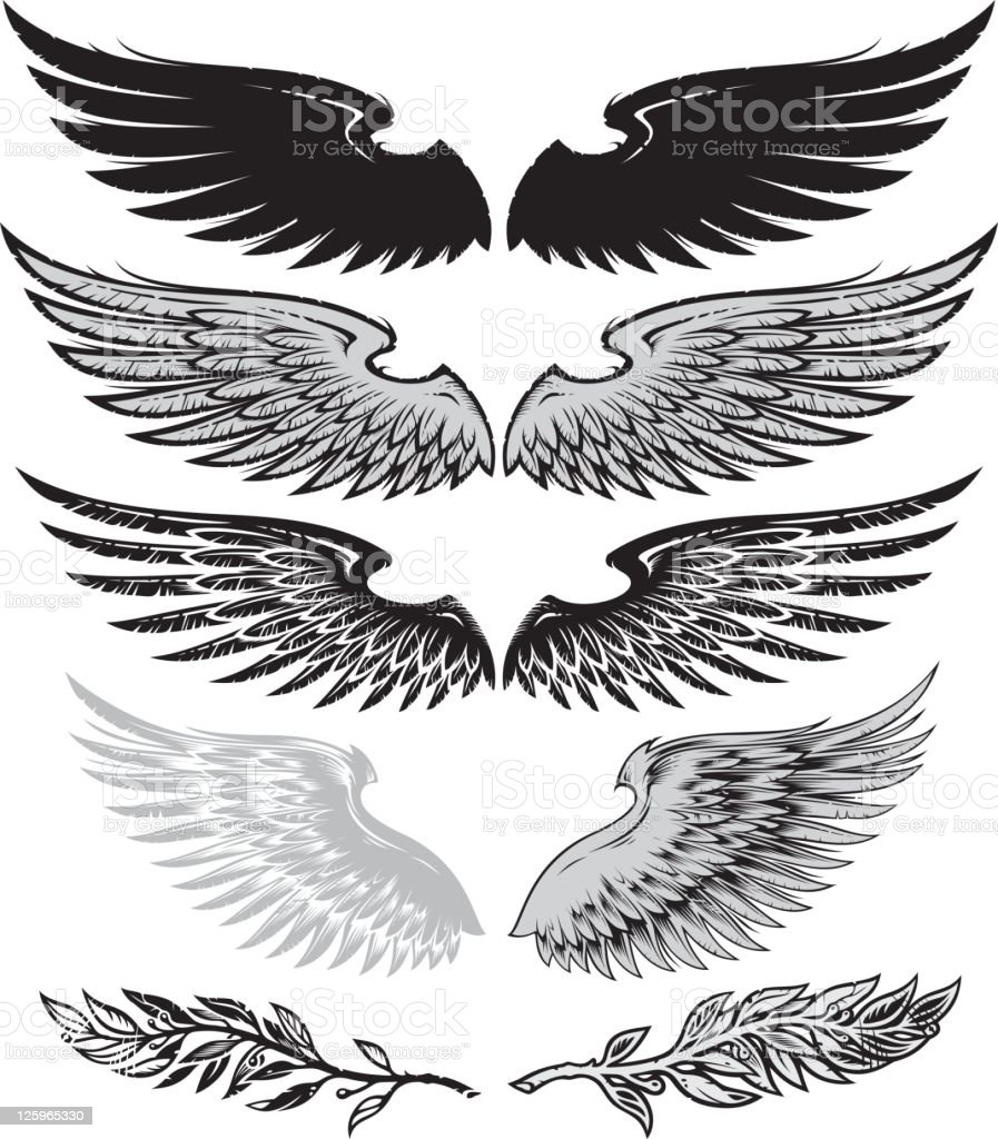 wings and laurel royalty-free wings and laurel stock vector art & more images of animal body part
