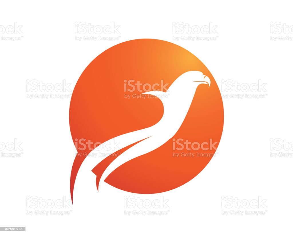 wings bird sign abstract template icons app stock vector art more