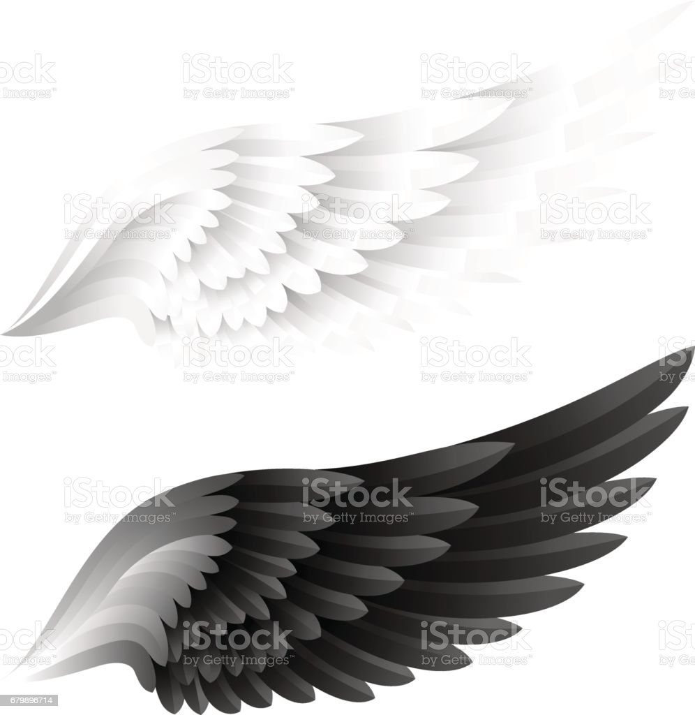 Wings collection. White and black color variant. Vector illustration.