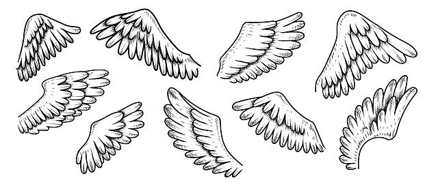 Wings Doodles Set