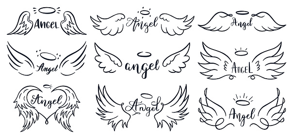 Wings hand drawn lettering. Doodle elegant angel wings phrases, sketched flight feather, winged angel wings and lettering vector illustration set