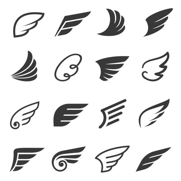 Wings icon set, angel or bird symbol vector art illustration