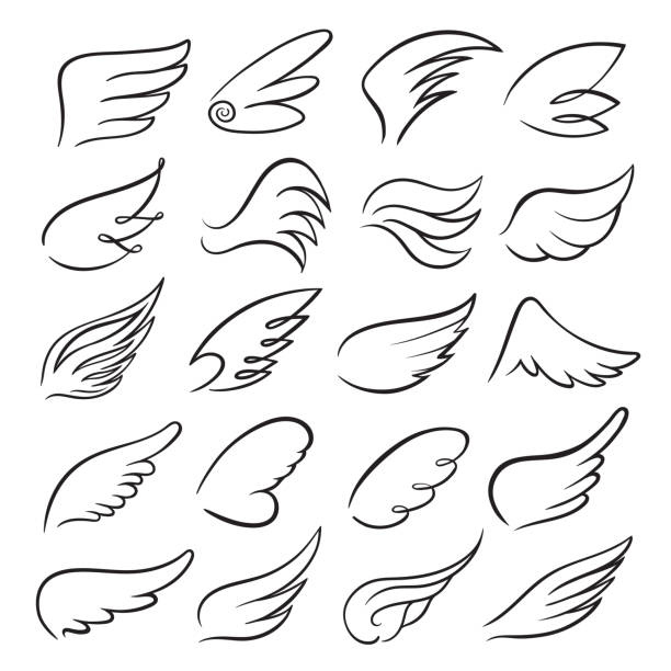 Wings icon set, bird drawing in motion Wings icon set, bird drawing in spread and motion. Angel shape element. Vector line art illustration isolated on white background animal wing stock illustrations