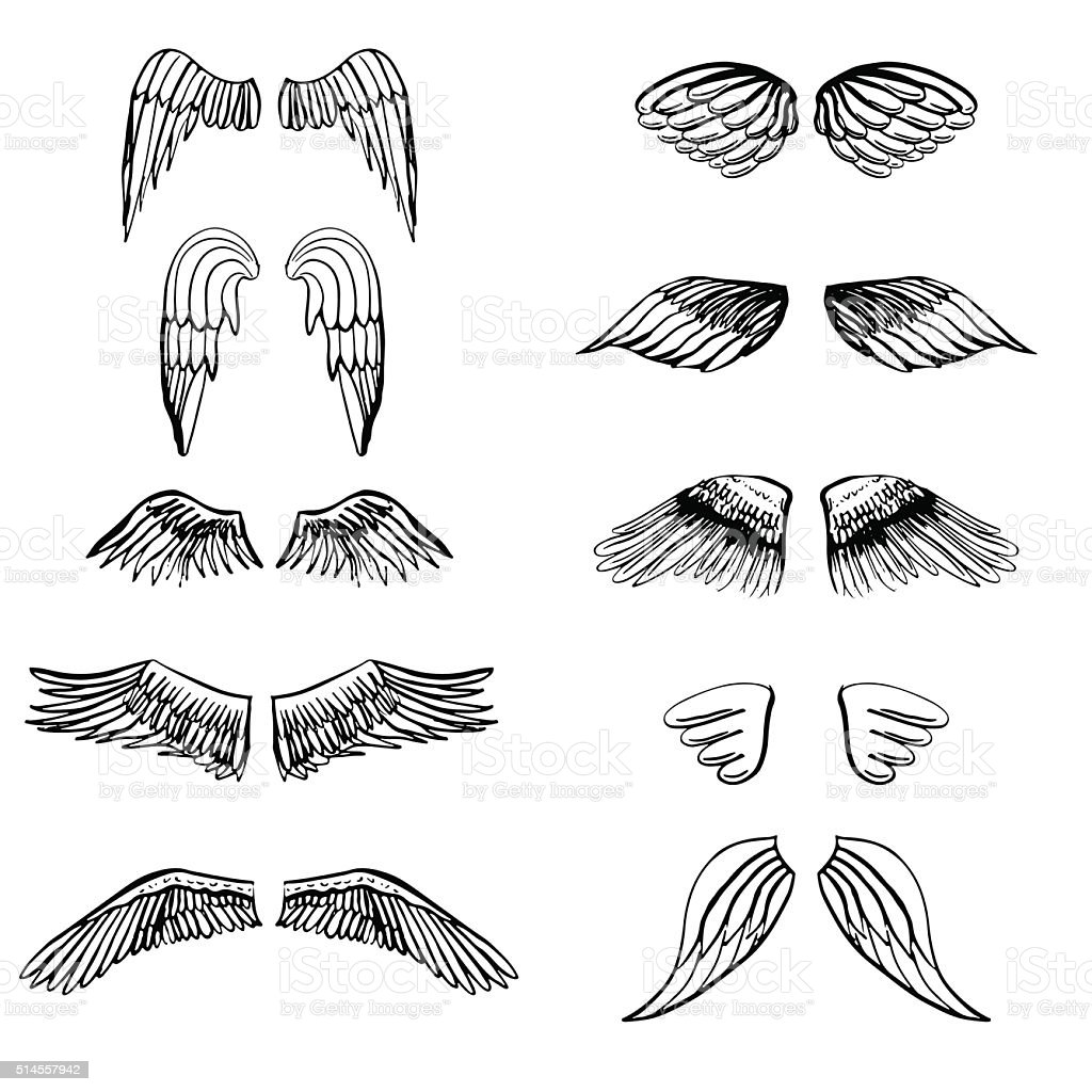 Wings illustration silhouettes set for making your own badge, label vector art illustration