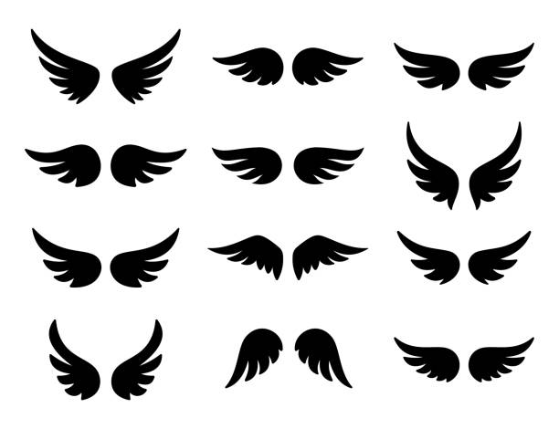 wings logo set. vector - animal wing stock illustrations