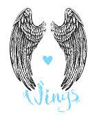 wings of bird